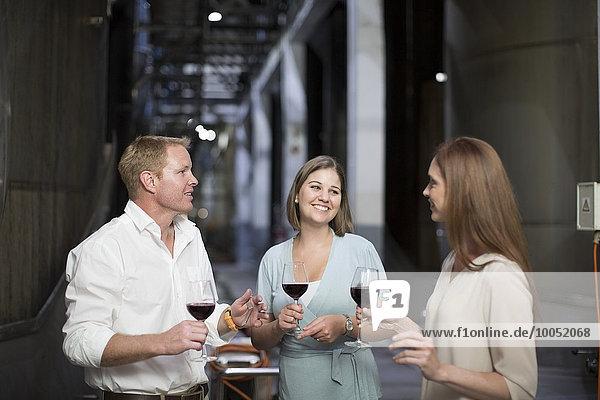 Drei Personen bei einer Weinverkostung im Keller bei einer Diskussion