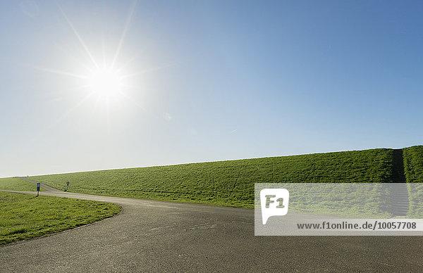 Grasdeich zum Schutz des Polder vor dem Wasser  Riland  Seeland  Niederlande Grasdeich zum Schutz des Polder vor dem Wasser, Riland, Seeland, Niederlande