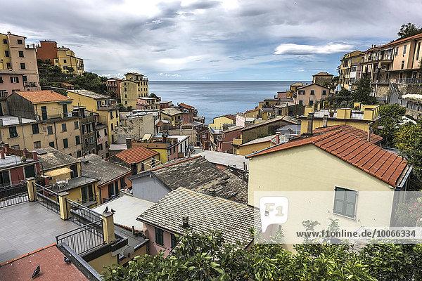 Ortsansicht  Riomaggiore  La Spezia  Cinque Terre  Italien  Europa