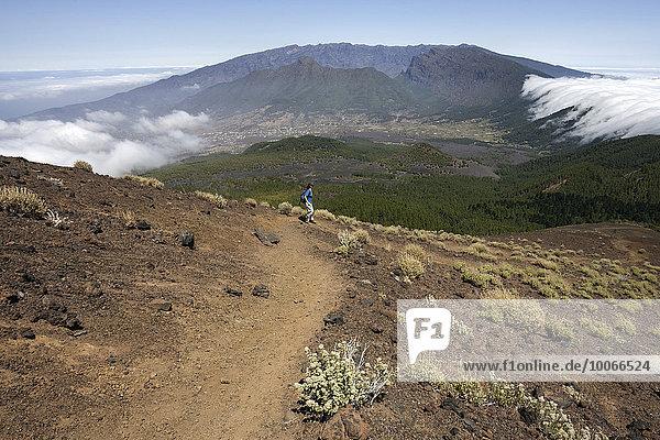 Ausblick vom Pico Birigoyo auf den Kiefernwald und den Wolkenwasserfall über der Cumbre Nueva  hinten das Valle Aridane und die Caldere de Taburiente  La Palma  Kanarische Inseln  Spanien  Europa