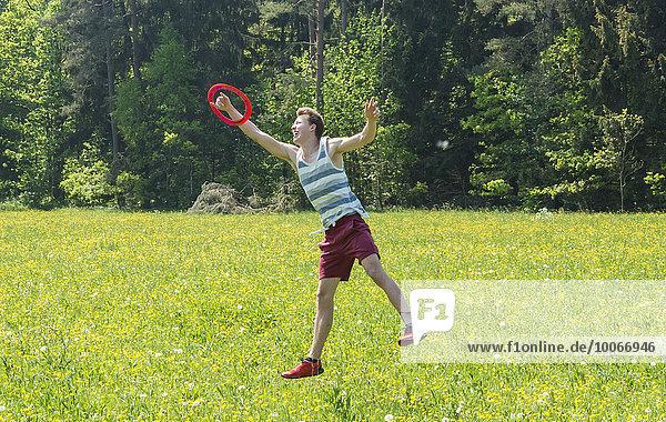 Junger Mann fängt Frisbee  gelbe Blumenwiese  Perlacher Forst  München  Bayern  Deutschland  Europa