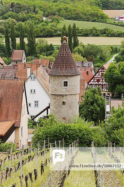Joachimsturm  Frickenhausen am Main  Mainfranken  Unterfranken  Franken  Bayern  Deutschland  Europa