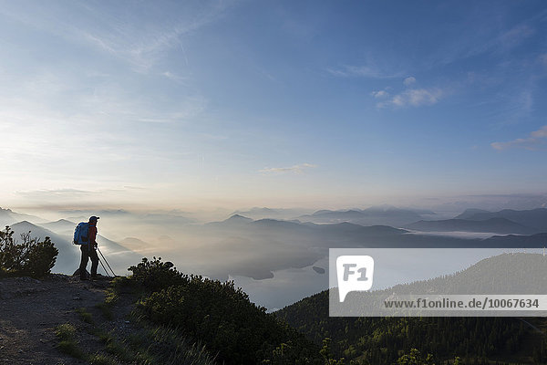 Mountaineers in the early morning with the Bavarian Alps  Herzogstand  lake Walchensee  Upper Bavaria  Bavaria  Germany  Europe