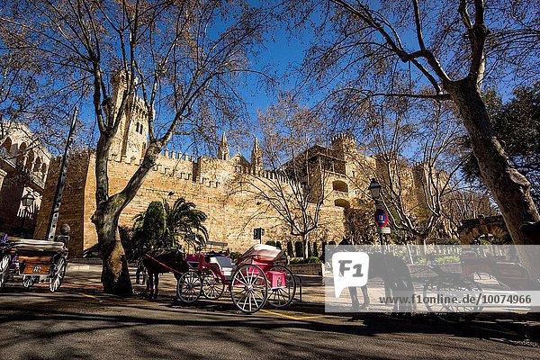 galeras de caballos frente al Palacio Real de La Almudaina  Palma  Mallorca  balearic islands  spain  europe.