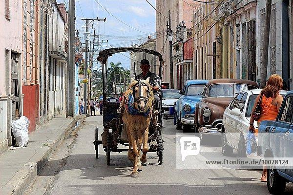 Horse and wagon on city street  common transportation in Cuba  Santa Clara  Cuba