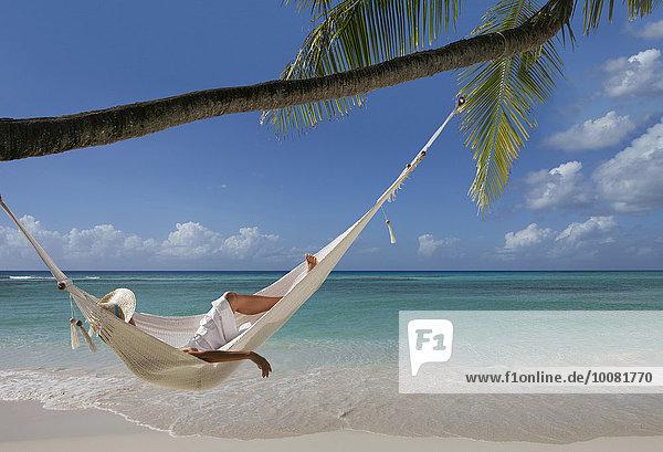 liegend liegen liegt liegendes liegender liegende daliegen Tropisch Tropen subtropisch Europäer Frau Strand Baum unterhalb Hängematte Palme