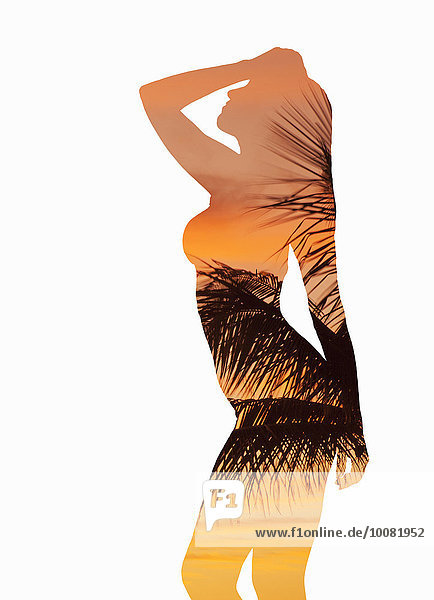 Palmenblatt Europäer Frau Sonnenuntergang Silhouette