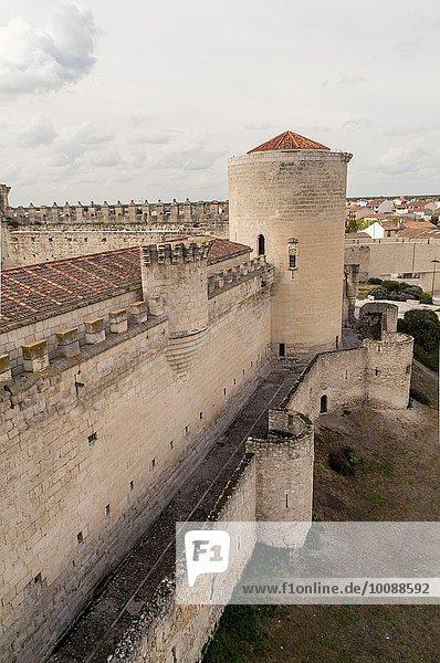 León Segovia