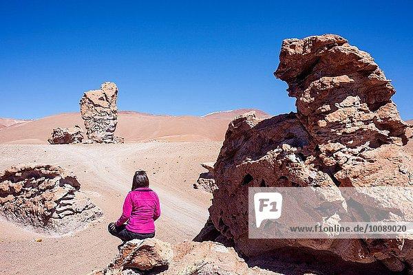 nahe Atacama Chile