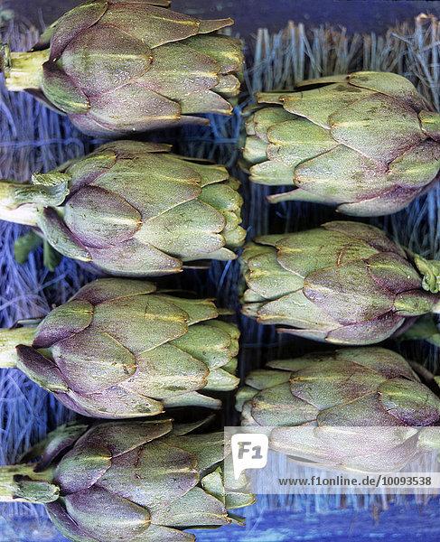 seven artichoke