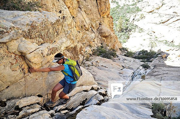 Junge Bergsteigerin  die sich in die Spalte zieht  Mount Wilson  Nevada  USA