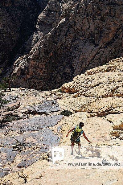 Rückansicht einer jungen Kletterin  die den Fels hinunterklettert  Mount Wilson  Nevada  USA
