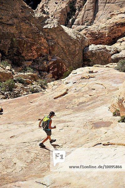 Hochwinkelaufnahme einer jungen Wanderin auf dem Felsen  Mount Wilson  Nevada  USA