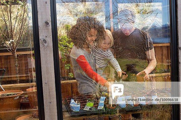 Junge und Eltern beim Betrachten von Pflanzen