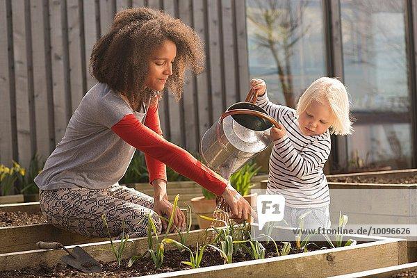 Mittlere erwachsene Frau hilft Sohn Wasserpflanzen im Hochbeet