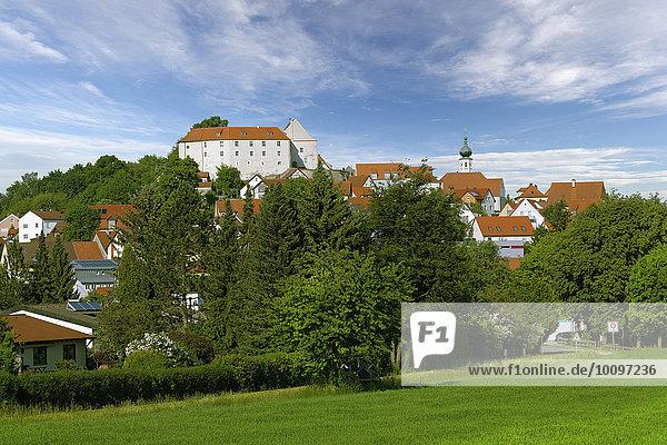 Ortsansicht mit Burg und Pfarrkirche St. Barbara  Lupburg  Oberpfalz  Bayern  Deutschland  Europa