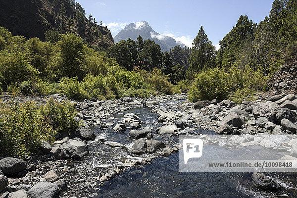 Rio Taburiente  Nationalpark Caldera de Taburiente  La Palma  Kanarische Inseln  Spanien  Europa