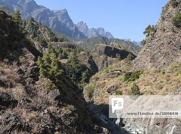 Barranco de las Angustias  Caldera de Taburiente  La Palma  Kanarische Inseln  Spanien  Europa