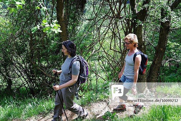 Zwei erwachsene Wandererinnen auf dem Waldweg