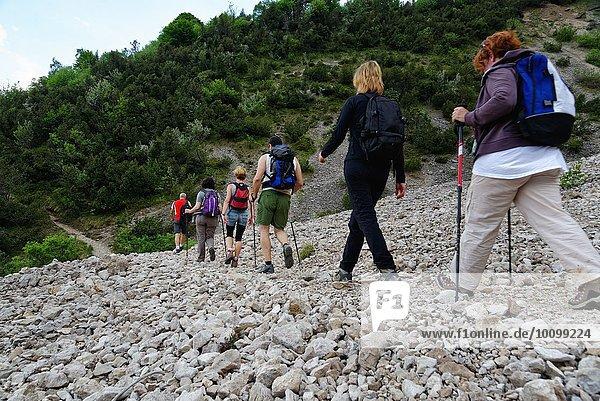 Reihe von sechs reifen Wandererinnen und Wanderern im Steintal