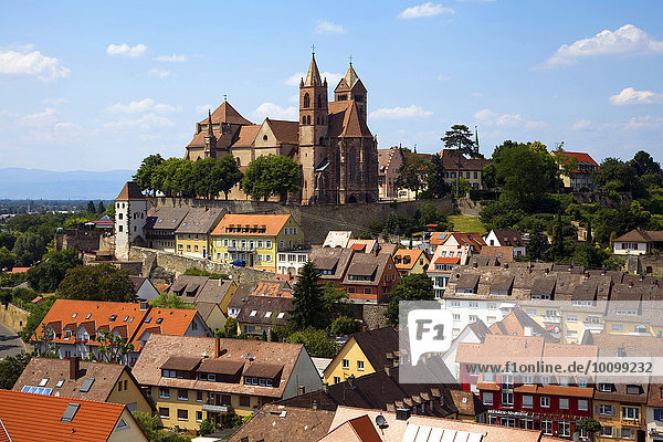Ausblick vom Eckhartsberg auf die Altstadt mit dem romanischen St. Stephansmünster  Breisach am Rhein  Oberrhein  Schwarzwald  Baden-Württemberg  Deutschland  Europa