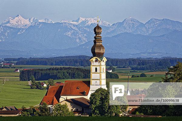 Pfarrkirche Mariä Himmelfahrt  hinten die Berchtesgadener Alpen mit Hochkalter  links  Schnaitsee  Chiemgau  Oberbayern  Bayern  Deutschland  Europa