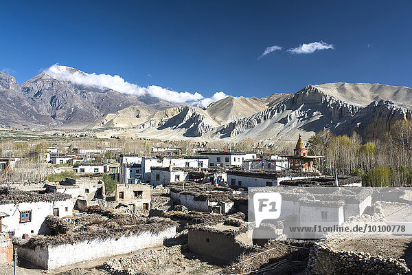 Traditional houses and Buddhist stupa in the village of Tsarang in front of mountain landscape  former Kingdom of Mustang  Nepal  Asia