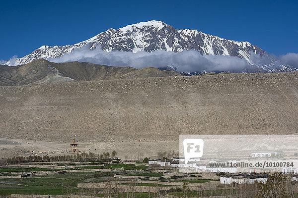Kleine  mit einer Steinmauer umgebene Felder und Wohnhäuser im Dorf Tsarang vor schneebedeckten Bergen  ehemaliges Königreich Mustang  Nepal  Asien