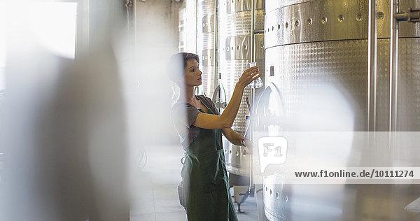 Weinverkostung aus Edelstahlbehälter im Weinkeller