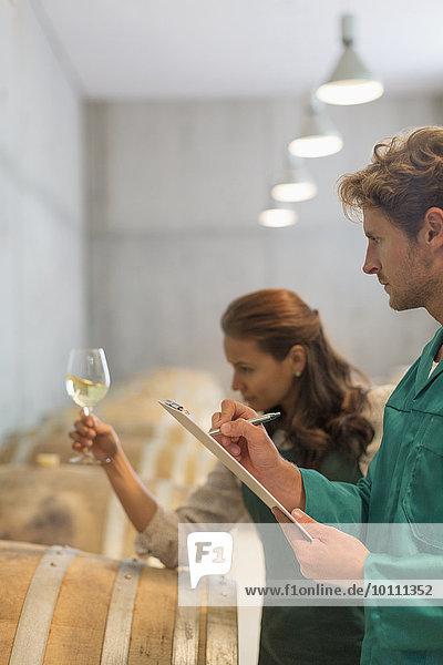 Winzer untersuchen Weißwein im Weinkeller