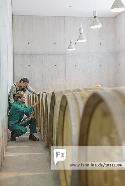 Winzer prüfen Fässer im Weinkeller