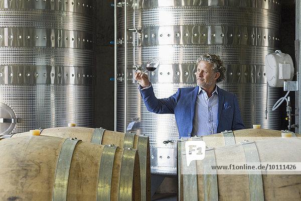 Winzer untersucht Rotwein im Weinkeller