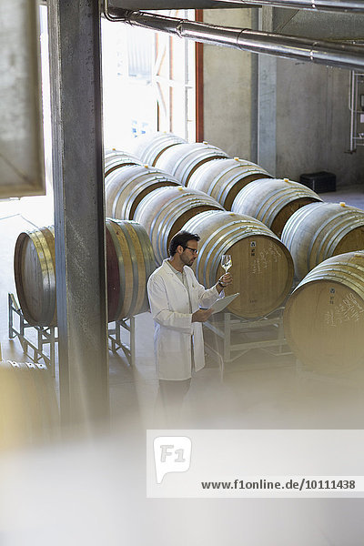 Winzer im Laborkittel bei der Untersuchung von Weißwein im Weinkeller