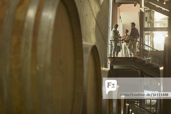 Winzer im Gespräch auf der Plattform im Weinkeller