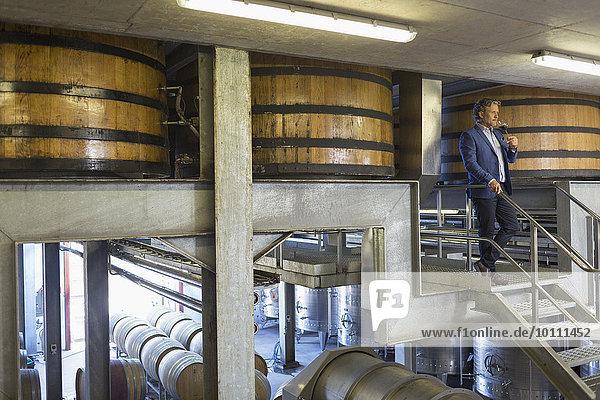 Winzer mit Rotwein auf Plattform im Weinkeller