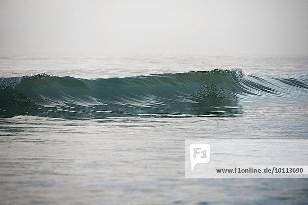 Ocean wave Ocean wave
