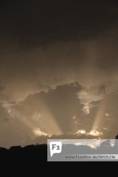 Sonnenstrahl Wolke Sonnenstrahl,Wolke