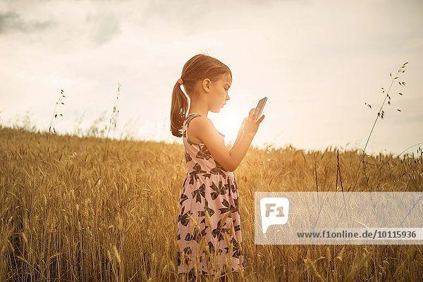 Mädchen konzentriert sich auf Smartphone Touchscreen im Weizenfeld