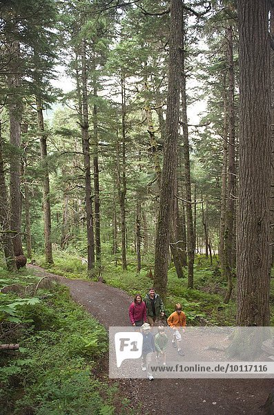 Familie erkunden Wälder  Winner Creek  Alyeska Resort  Turnagain Arm  Mt. Alyeska  Girdwood  Alaska  USA