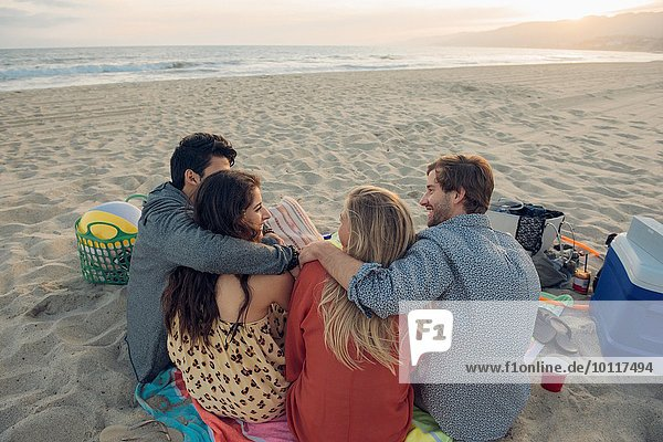 Group of friends having picnic on beach  rear view