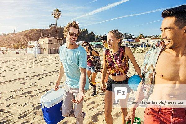 Gruppe von Freunden  die am Strand spazieren gehen  bereit zum Picknick