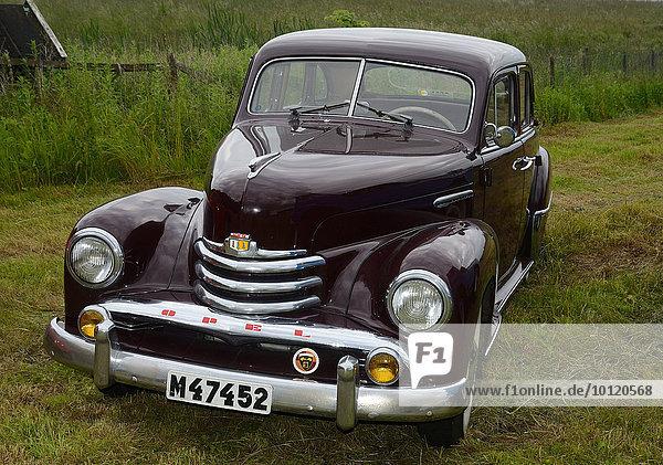 Oldtimer  Opel Kapitän Sedan HCV  1951  Skurup  Schweden  Europa