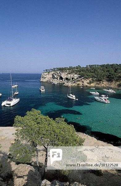 Segelboote in der Bucht bei Portals Vells  Mallorca  Balearen  Spanien  Europa