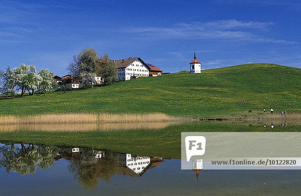 Hergratsrieder See  Allgäu  Bayern  Deutschland  Europa