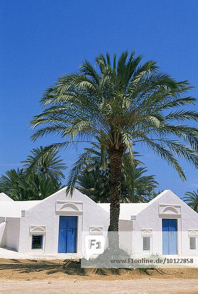 Traditionelles Bauernhaus Menzel  Djerba  Tunesien  Afrika