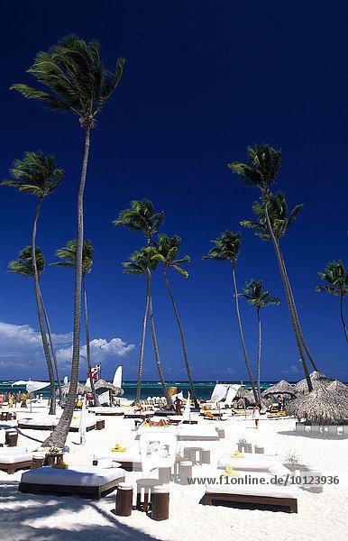 Palmenstrand in Playa Bavaro  Punta Cana  Dominikanische Republik  Karibik  Nordamerika