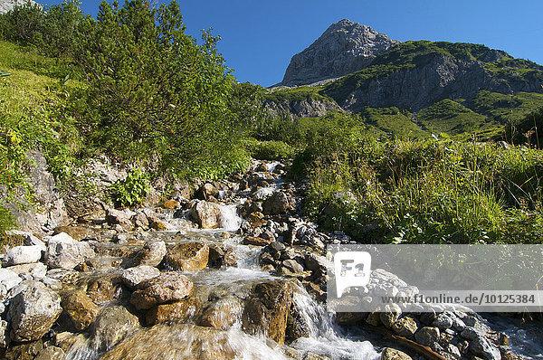 Auf dem Weg zum Prinz-Luitpold-Haus,  Hintersteiner Tal,  Bad Hindelang,  Allgäu,  Bayern,  Deutschland,  Europa