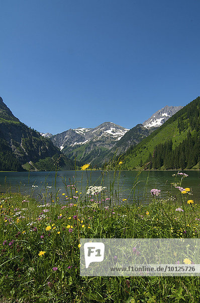 Vilsalpsee im Naturschutzgebiet Vilsalpsee  Tannheimer Tal  Allgäu  Tirol  Österreich  Europa