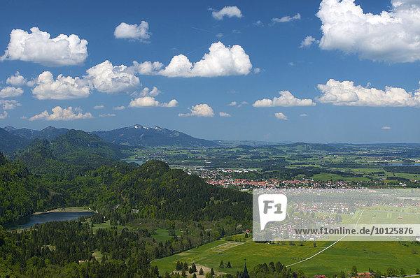 Blick vom Tegelberg auf Füssen und Schwansee  Allgäu  Bayern  Deutschland  Europa