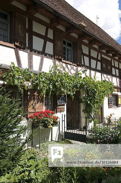 Bauernhofmuseum in Wolfegg  Oberschwaben  Allgäu  Baden-Württemberg  Deutschland  Europa